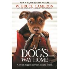 Собачья дорога домой / A Dog's Way Home